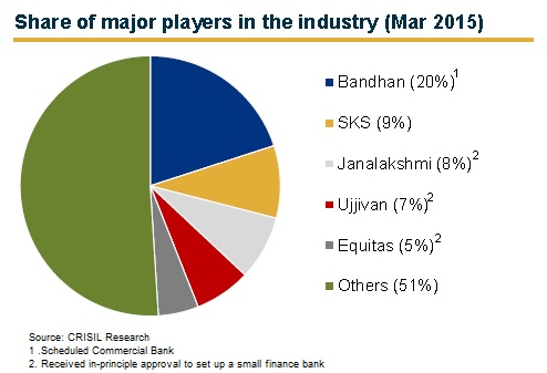 Major microfinance players