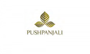 Pushpanjali Realms and Infratech IPO