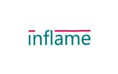 Inflame Appliances IPO